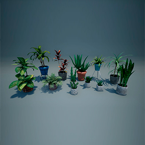 Pack of 12 differents plants and 12 differents pots that you may like to use for decorate your project