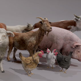 This pack gathers 5 farm animals that are ready to be dropped into your project. Perfect to enhance any environment with a farm, barn, coop, fields etc.