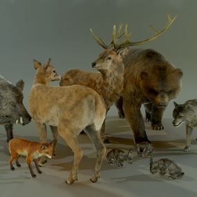 This pack includes a set of 7 animals ready to populate your forest environment.