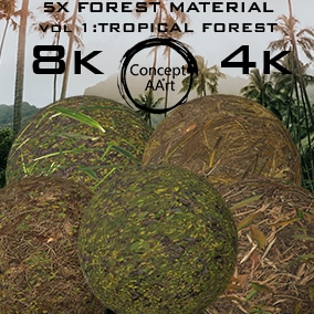 5 Super Realistic Tropical Forest Materials for all platforms. All Textures have their own 8K,4K,2K and 1K version and ready for every kind of project.