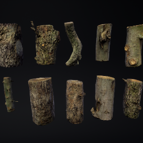 This pack contains 10 different tree logs models based on photogrammetry data and enhanced with procedural tools.