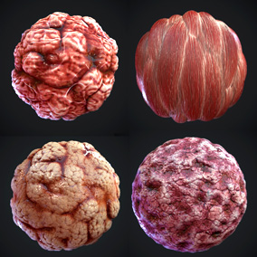 Package of 7  PBR Materials (flesh)
