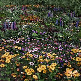 "This content is part of the content ""Flowers and Plants Nature Pack"" and includes all garden plants, landscape material, spline elements, and customization system."