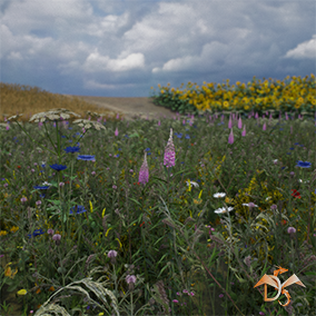 "This content is part of the content ""Flowers and Plants Nature Pack"" and includes all forest plants, landscape material and customization system."
