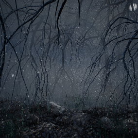 Hanging leafless trees in a fog filled forest.