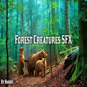 Sound effects of forest animals, birds and insects