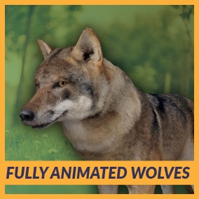 Fully Animated Wolves can be used for any type of game, as main characters, enemy, prey, or anything else. The package comes with 60 high-quality animations, 7 different styles, real-time fur, 4 LOD