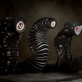 Giant Leeches Collection with Animations