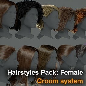 Hairstyles Using the Groom system.