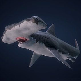 This pack includes animated Hammerhead Shark ready to populate your underwater world.
