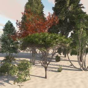 This resource bundle contains 73 models of high simulation natural plants. There are 25 kinds of plants. Each plant includes two to five different poses, and the combination of UE4 tools can easily create a real natural environment.
