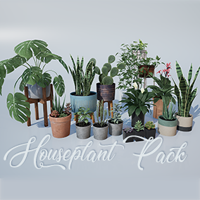 Mix and match this assortment of high-quality houseplants and customizable planters to add some flair to your realistic environments.