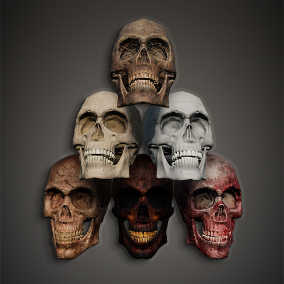 A set of various human remains, with multiple texture variations.