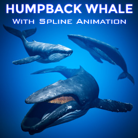 This Humpback Whale comes with a procedural animation system that swims along your spline and opens its mouth when nearing the player!
