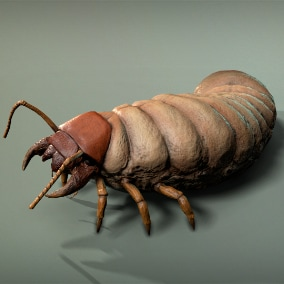 Insect Larva is a 3D character, great for games of many genres.