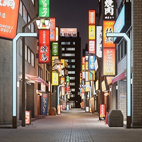 Japanese Night City contains the assets to make up the downtown area of Japan.
