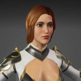 Low-Poly Rigged PBR Modular Character - Knight Woman