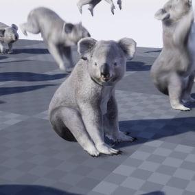 Koala 3d model animated