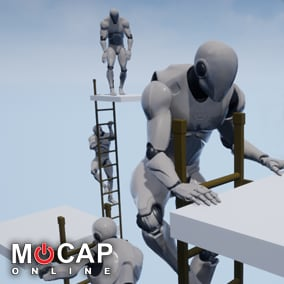 78+ Ladder Motion Capture Animations