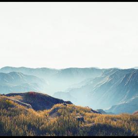 Landscape VOL 01