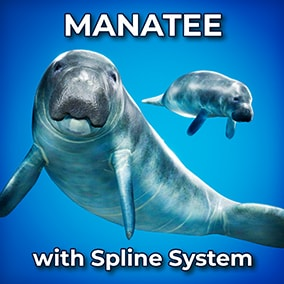 This Manatee comes with a procedural animation system that swims along your custom spline!