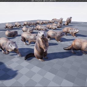 Marmot 3d model animated