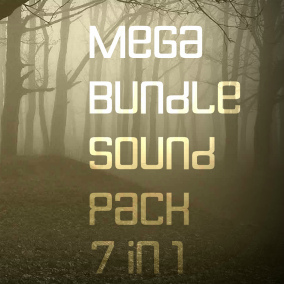 553 sounds, which include both sound FX, and full-length ambient tracks, which will help brighten your game in the necessary dark tones and give a special atmosphere.