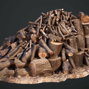 Megascans: Chopped Wood is a collection of premium quality 3D scans including LODs and high-poly source, with baked and calibrated PBR maps.