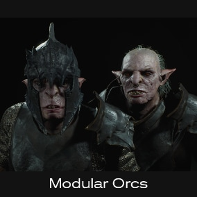 The Modular orc pack comes with different Armoursets for Light Fantasy games