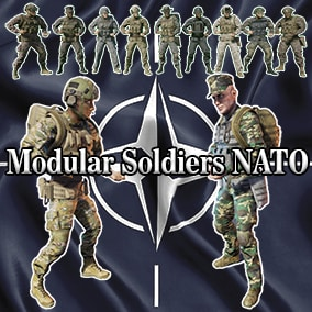 Modular NATO Soldiers animated and game ready.