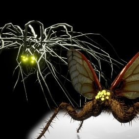 All surface crawling monsters and flying monsters for some scary scenes in your game. Crawlers can climb walls, ceilings and corners and jump from surface to another. Flying monsters hover around. Both attack the player if damaged.