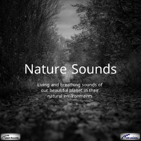 Living and breathing sounds of our beautiful planet in their natural environments