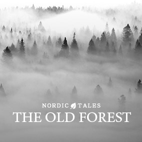 Discover old forests and ancient ruins with Nordic Tales - The Old Forest