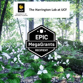 This content pack includes 35 AR/VR ready botanically correct plants that naturally occur in Northeastern US (Maine to Michigan to Kentucky and Virginia) presented as accurate visualizations in 2 photorealistic sample ecosystem models.