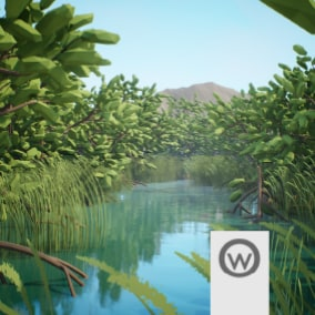 Beautiful asset package for design mangrove environments