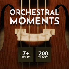 From epic themes to traditionnal ambiance, including comedy, western, fantasy, or more intimate and nostalgic sounds, this library cover a huge amount of emotions, which will embellish all your productions, always in a high quality orchestral atmosphere.