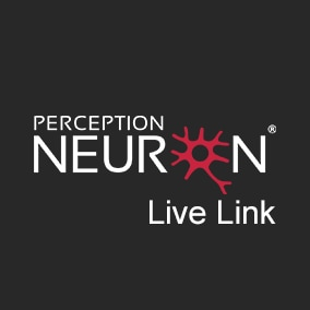 Plugin used to stream motion capture data from Perception Neuron 2.0 | Pro | Studio Software into Unreal Engine.