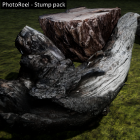 PhotoReel - Stump Pack. A collection of 8 photo-realistic tree stumps, bring your forest scene to life!