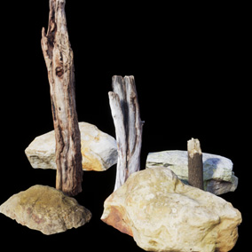 A small nature pack including 4 Photoscanned Rocks and 3 Trunks