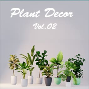 8 decoration plants
