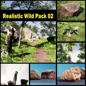Realistic Wild Environment for Architecture and Games
