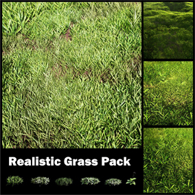 Realistic Grass Foliage for Architecture and Games