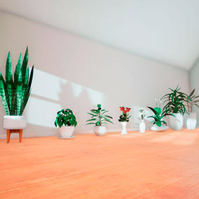 Realistic plants for decoration in archviz. Pack of 8 plants modeled and textured.