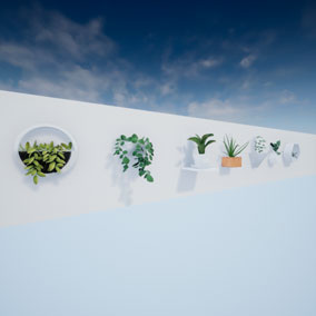 Plants for decoration. Pack of 7 plants modeled and textured.