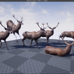 Red deer 3d model Animated