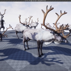 Reindeer 3d model animated