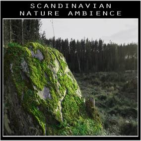 Scandinavian Nature Ambience