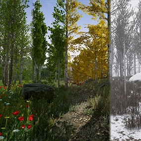 Pack contains photorealistic, photoscanned poplar/aspen trees, foliages, ferns, shrubs, rocks models, photoscanned terrain textures and material sets. All for spring, summer, autumn and winter seasons with sample scenes.