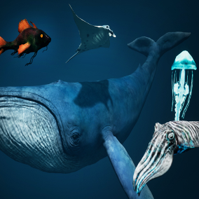 Contains 5 game ready high detail sea creatures: a blue whale, Manta Ray, Cuttlefish, reef Fish and Jellyfish.