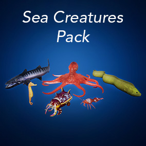 High Definition Sea Creatures with PBR textures and Animations
